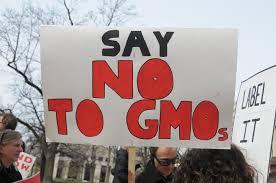 GMO's are a NO