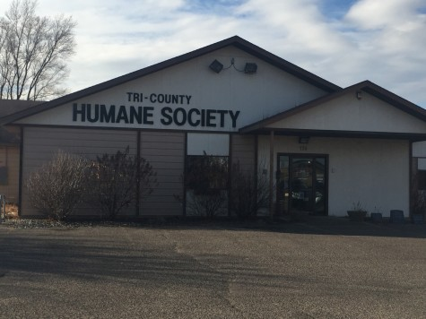 Humane Society Makes a Difference