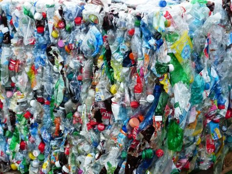 France goes plastic free
