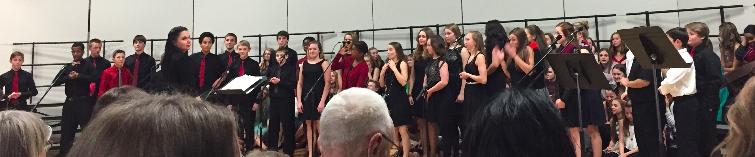 Sabre Singers