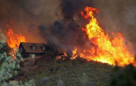 Fires devastate California wine country