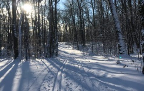 Snow, snow, snowmobiling!