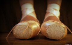 Brown pointe shoes make a difference