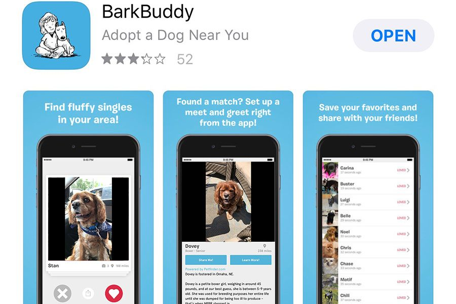 Tinder-like+apps+for+rescue+dogs+make+adopting+a+new+best+friend+easier+than+ever
