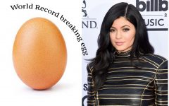 "Are you following the world record ""breaking"" egg?"