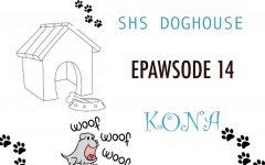 ePAWsode 14