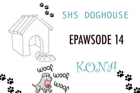 ePAWsode 16