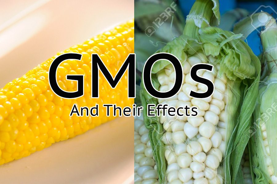 GMOs+get+a+bad+rap+but+they+aren%27t+as+bad+as+everyone+thinks.++