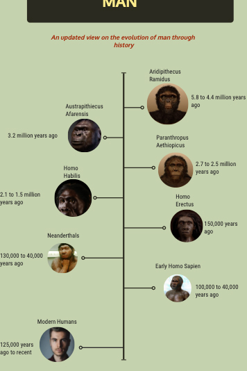 Thumbnail from a snapshot of the tree evolution.
