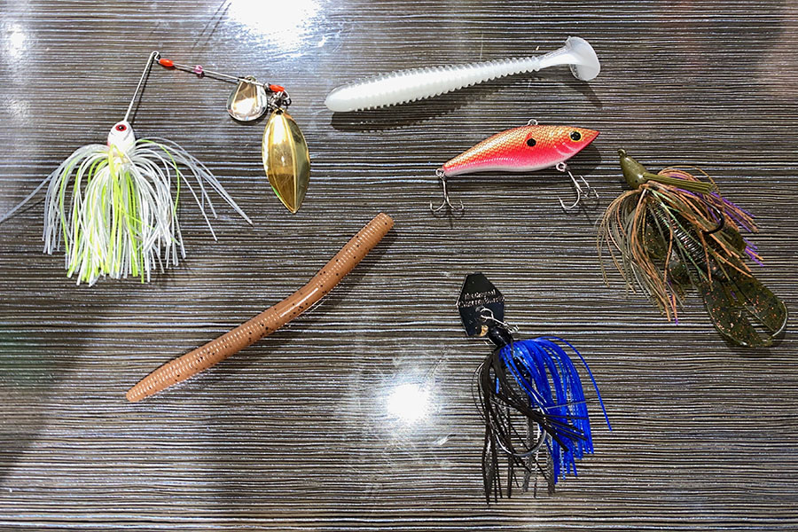 These+are+some+of+the+baits+that+were+talked+about.