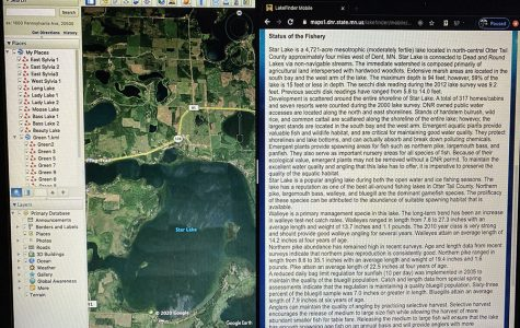 On the left side is the Google Earth Image of the Lake, the right side is from the Minnesota DNR lake survey.