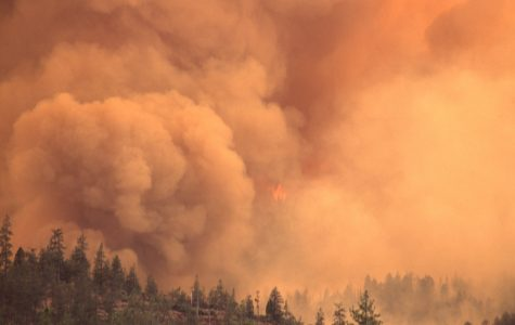 Smoke from wildfires across the sate of California, most notably the El Dorado fire, have choked the surrounding sky with a deep-orange-colored smoke.