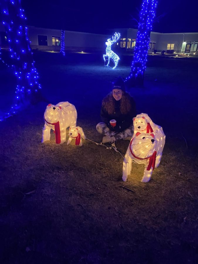 There are even cute lit up animals here.