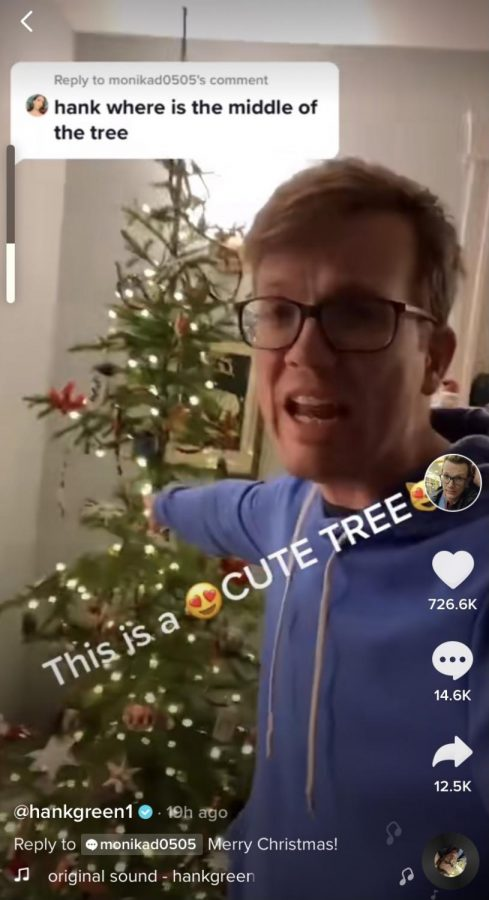 Hank expresses how he feels about the looks of his little tree