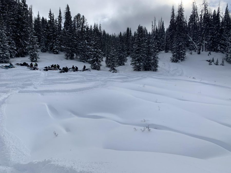 An open meadow after 2.5 ft of snow