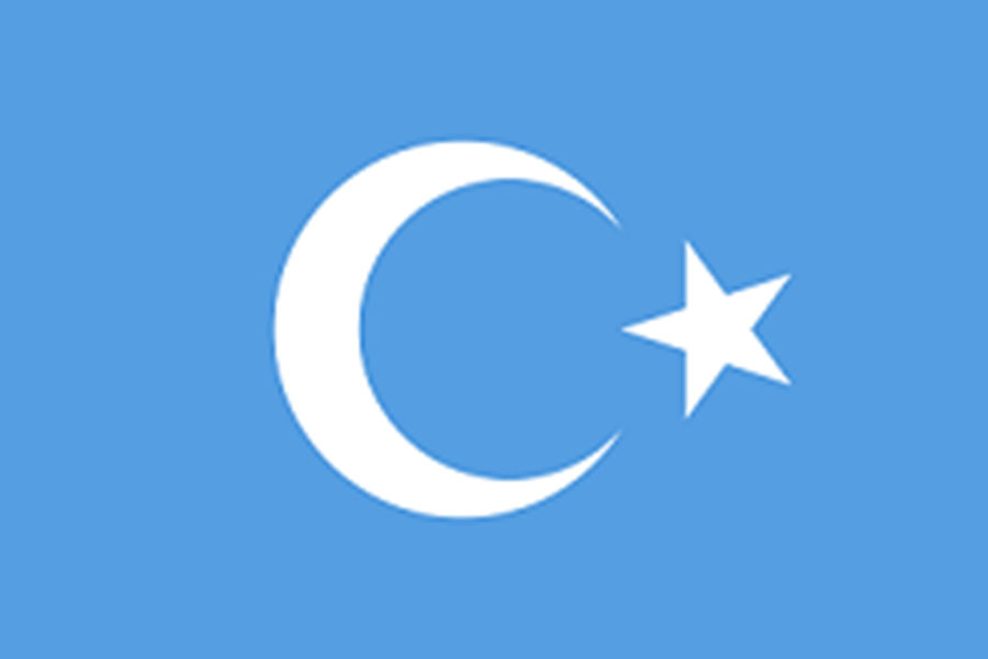 The flag of the Uighur Muslims who are reportedly being oppressed by the Chinese government.