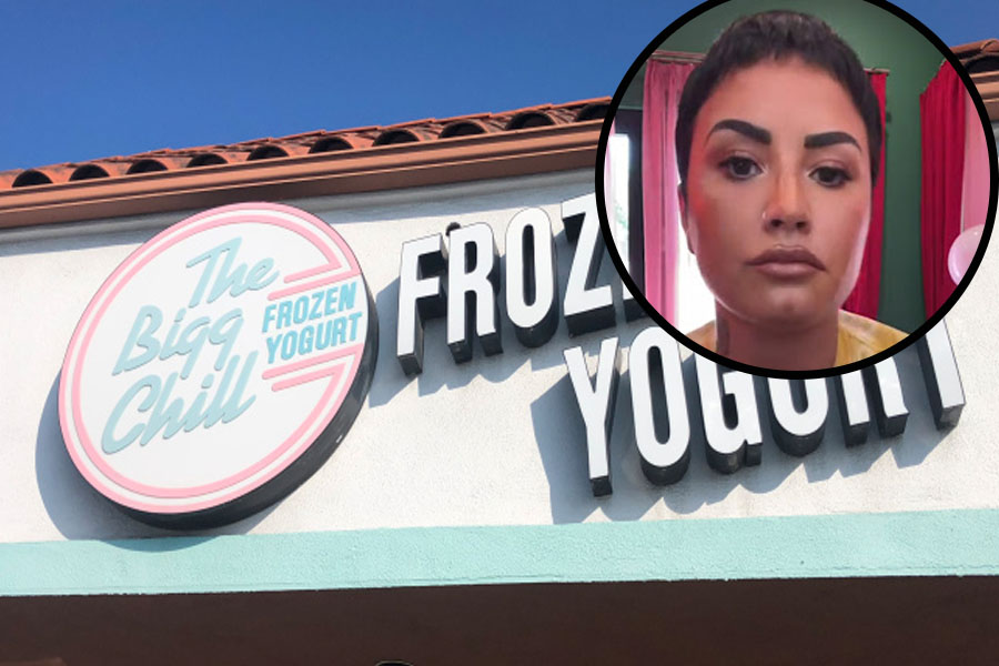 Demi Lovato visits The Bigg Chill Frozen Yogurt Shop in California, then she shortly finds herself in a feud.