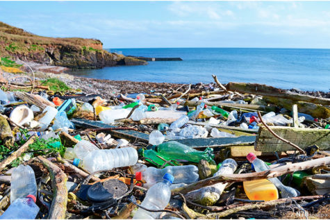 11 million metric tons of plastic go into the ocean every year