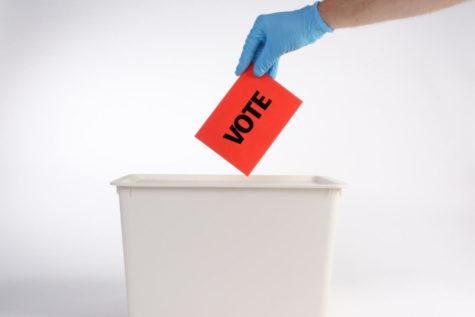 A voter putting their ballot in a ballot box